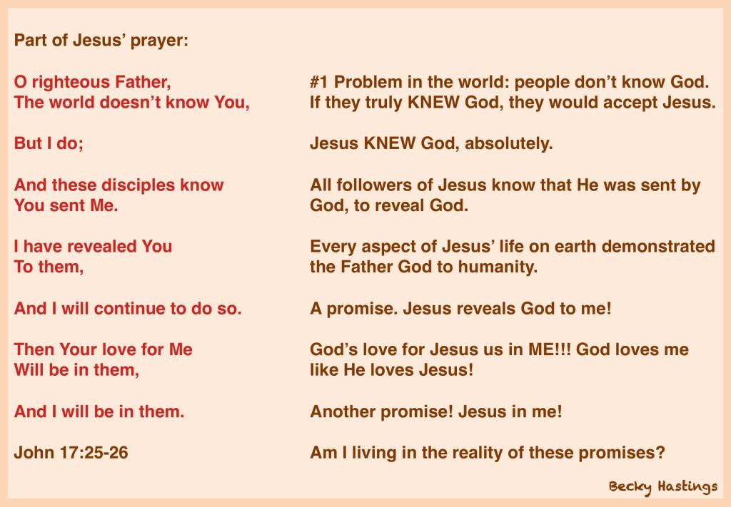 John 17 v 25